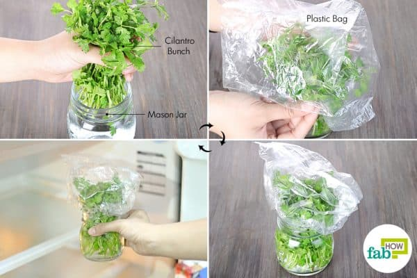 soak in a water-filled jar and cover to store cilantro