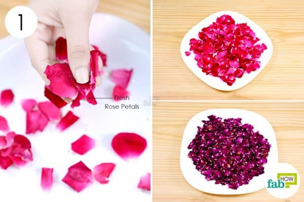 dry the rose petals to make DIY Holi colors