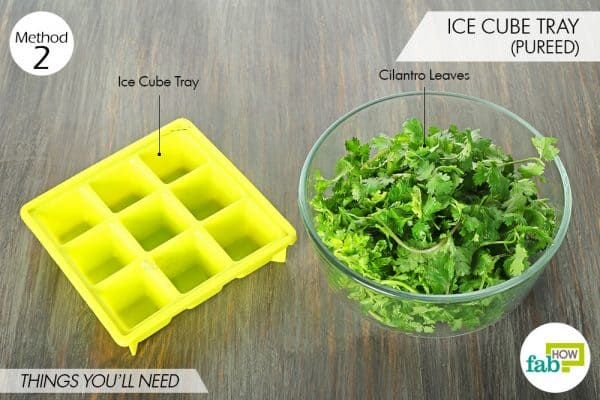 things needed to store cilantro using an ice cube tray