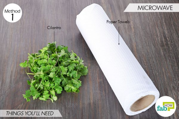things needed to store cilantro using microwave