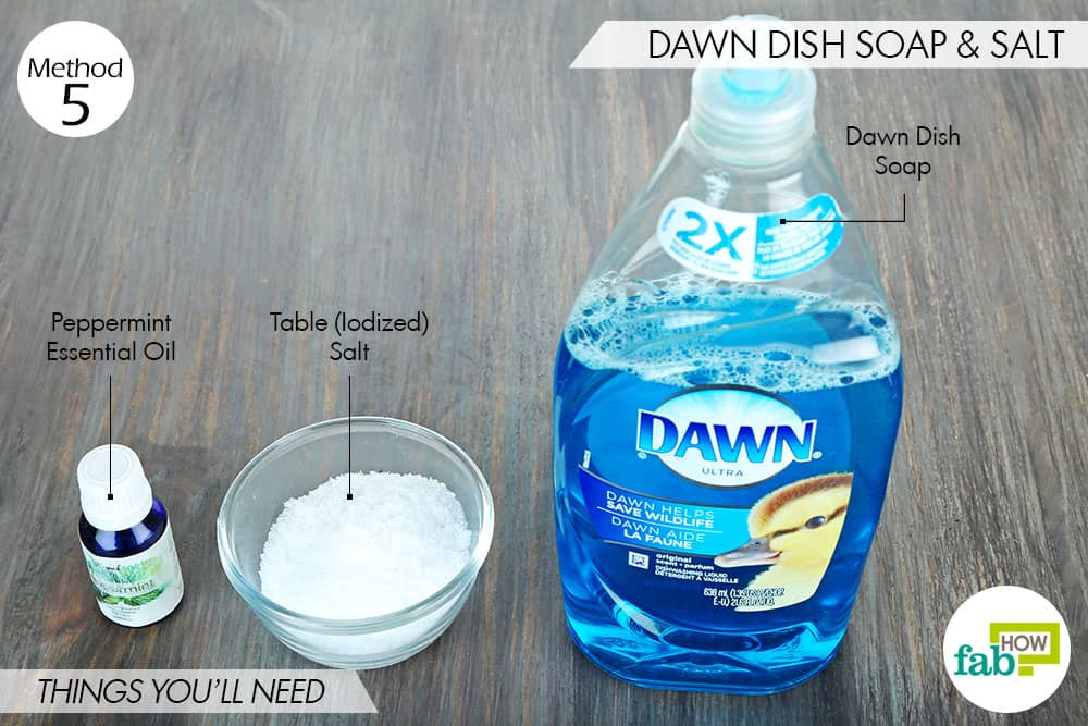 Dawn dish soap on puppies