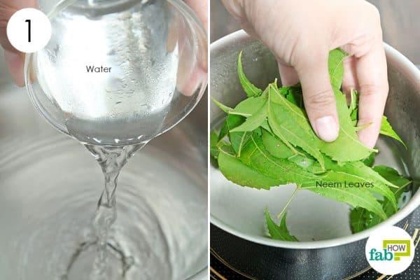 boil neem leaves to use acv for dandruff