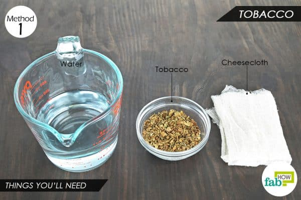 things you'll need to make DIY organic pesticide with tobacco