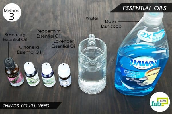 things you'll need to make DIY organic pesticide with essential oils