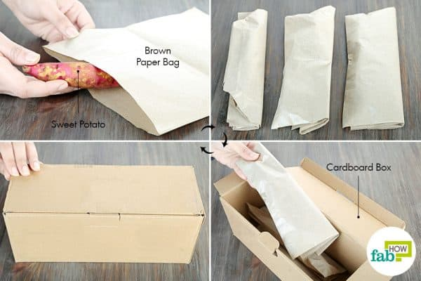 wrap each piece in paper bag to store sweet potatoes