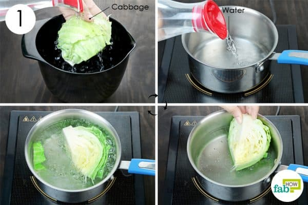 boil cabbage to store cabbage the right way