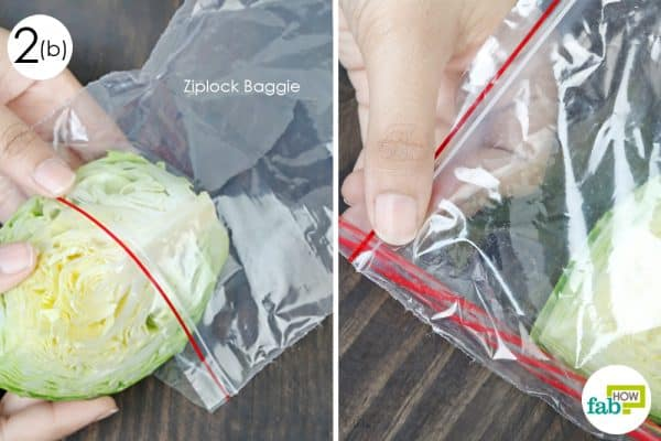 wrap and put in ziplock to store cabbage the right way