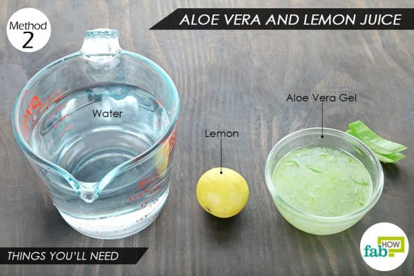 things you ll need to make aloe vera juice
