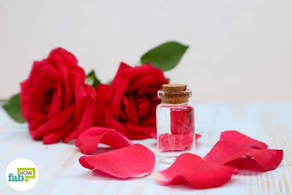 learn 10 ways to use rose water for a younger, supple and super glowing skin