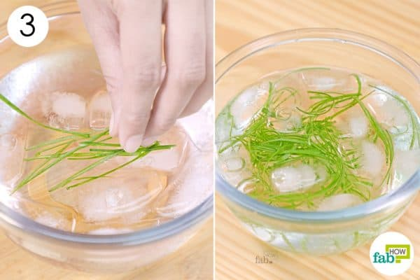 put sliced onions in ice water
