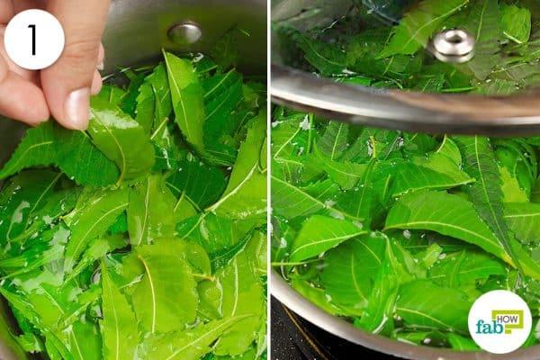 boil lilac leaves