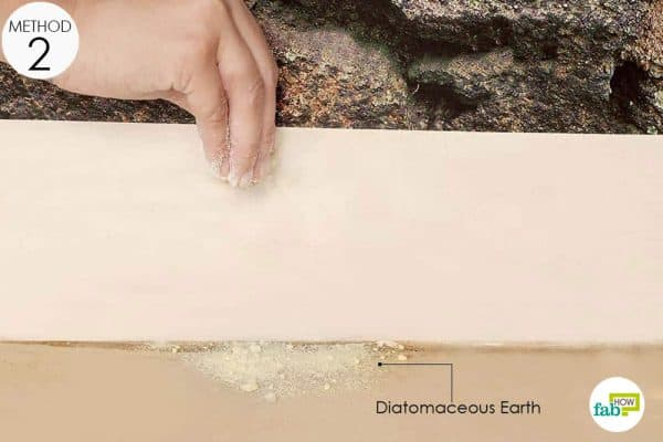 diatomaceous earth for crickets
