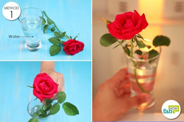 put flowers in ice water