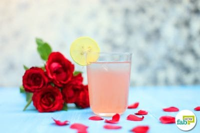 rose mojito recipe