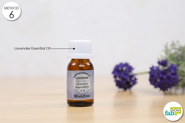 lavender essesntial oil for insomnia
