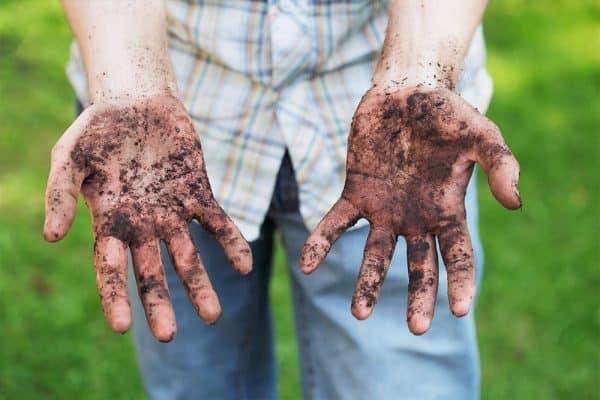 sugar hand scrub for gardening