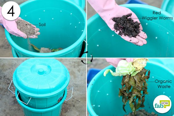 add worms and food for them