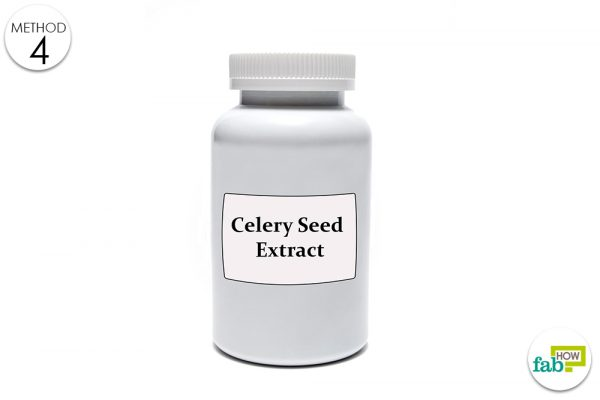 celery seed extract for uric acid